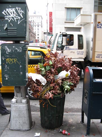 60th Street and Madison Avenue, Upper East Side, Manhattan, November 3, 2008, 2:24 p.m.