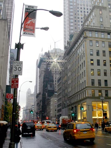 UNICEF Snowflake, Fifth Avenue and 57th Street, November 26, 2007, 2:04 p.m.
