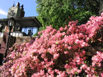 Delacorte Clock, Central Park, Spring 2004