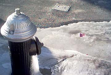 Frozen Hydrant, January 2004