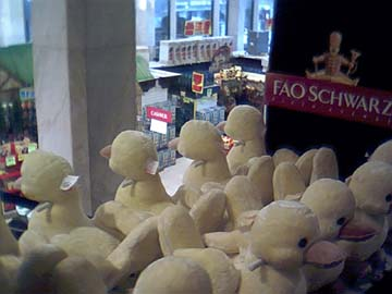 FAO Schwarz Leftovers, January 2004